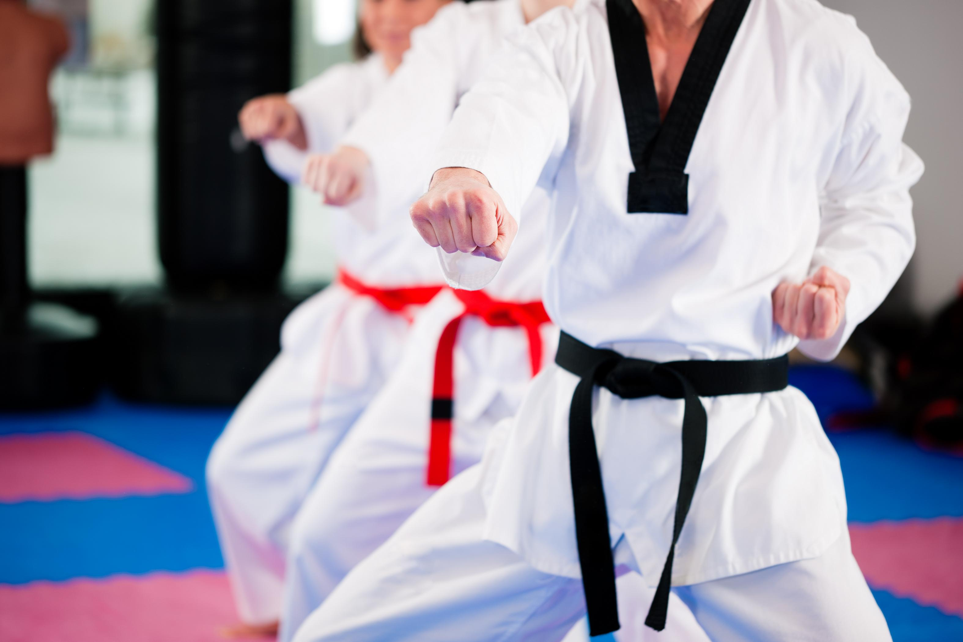 martial arts customized website
